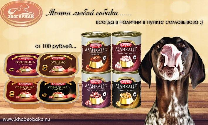 ХАБСОБАКА: Большое поступление знаменитых игрушек Гигви!!!!!! (Хабаровск) - Страница 5 ZQa95BeVgHo