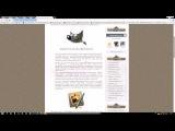 Аналоги Photoshop, программы для редактирования изображения