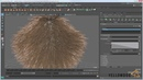 How to animate dynamic fur in Maya's XGen