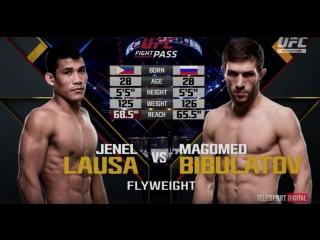 UFC 210 Лауса - Магомед Бибулатов Обзор боя
