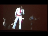 23_ Clips From My Elvis 8mm Footage Collection. Part 1