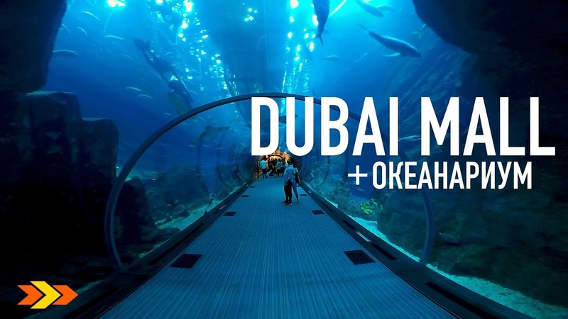 ОАЭ Мега круто Гигантский аквариум в Дубай Молл The Dubai Mall