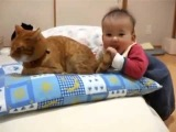 Малыш играет с котом