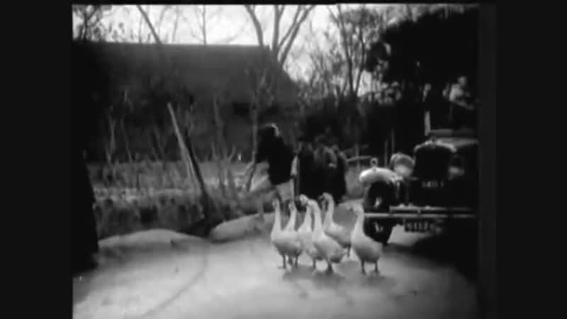 Ye mei gui Дикая роза (1932)