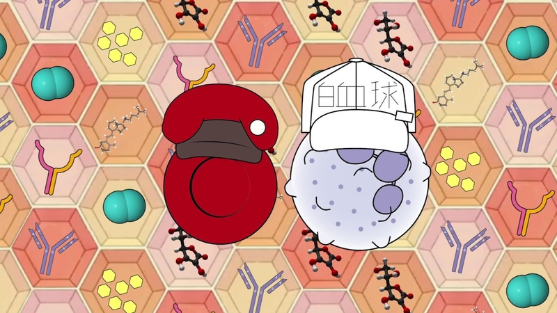 Cells at work Intro BUT in their cell forms and its animated :d