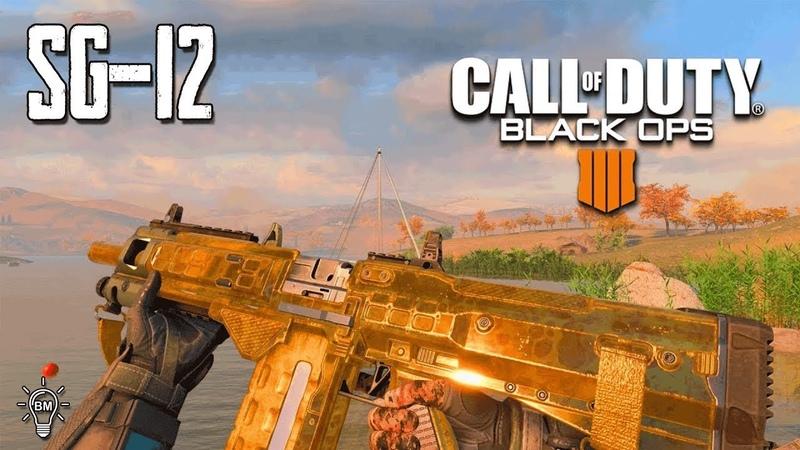 Стрим Call of Duty Black Ops 4/Качаем золото на SG-12 с товарищем Болдменом