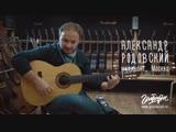 Хорошая гитара сама научит играть. Vicente Carrillo, Palo Santo. Александр Родовский