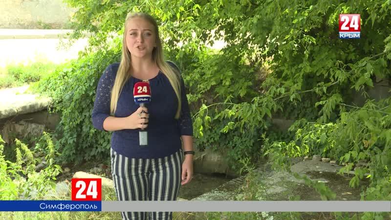 Петровская балка – красоты и нечистоты. Что изменилось за три месяца после визита корреспондентов «Крым 24» на место?