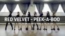 Red Velvet 레드벨벳 '피카부 Peek A Boo ' dance cover by SCHOOl