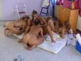 Лучшее порно;Лезби; http://vkontakte.ru/club18414769
