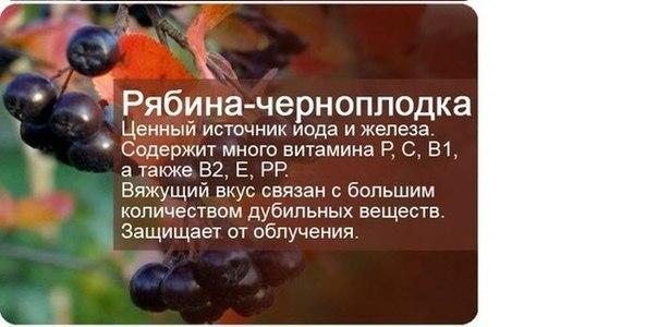 http://cs620517.vk.me/v620517414/a0e6/3OgioMP7zZA.jpg