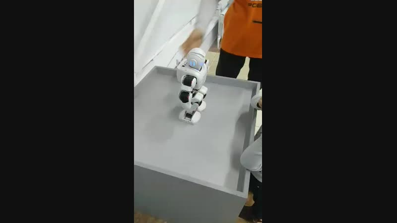 Video-a7b16b73b115ea813261261825eabc90-V.mp4