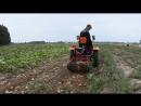 Картофелекопалка Кентавр КТ 7 в работе с минитрактором