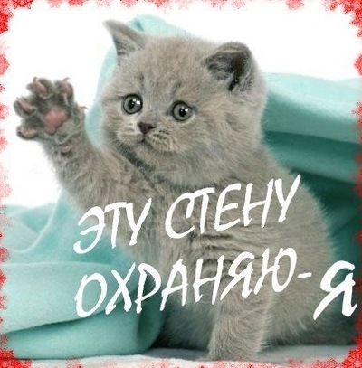 Ирина Лесина, 22 мая , Петрозаводск, id88761338