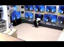 Пранк девушка из «Звонка» вылезает из реального телевизора