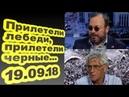 Станислав Белковский, Леонид Гозман - Прилетели лебеди, прилетели черные... 19.09.18