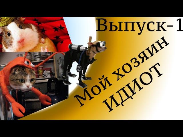 Фото Приколы выпуск 1 - Мой Хозяин Идиот