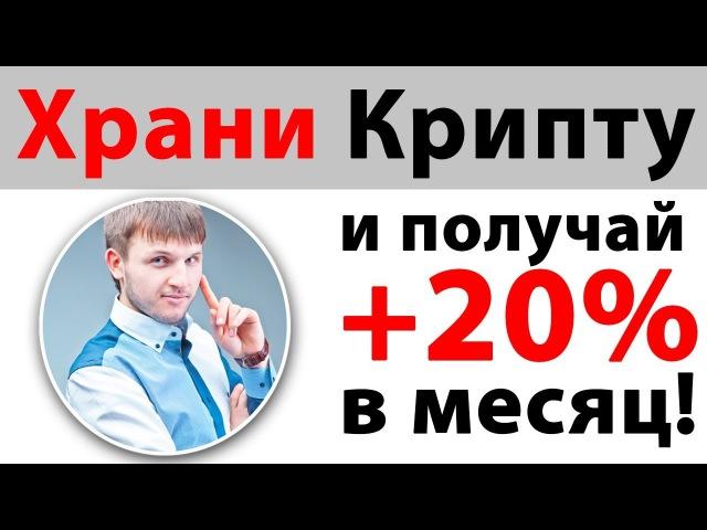 Virrex - КриптоКошелек с Доходностью до 20 в месяц! | Upavla.ru