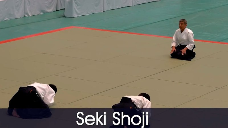 Seki Shoji Shihan - 56th All Japan Aikido Demonstration (2018)
