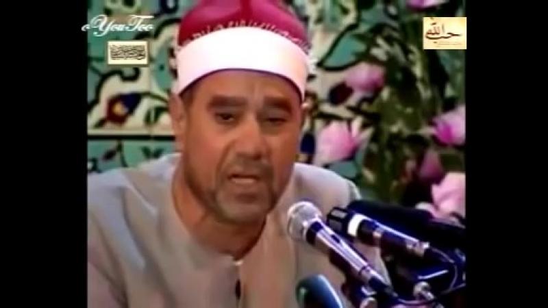 Коран (33:45-48) Ragheb Mustafa Ghalwash