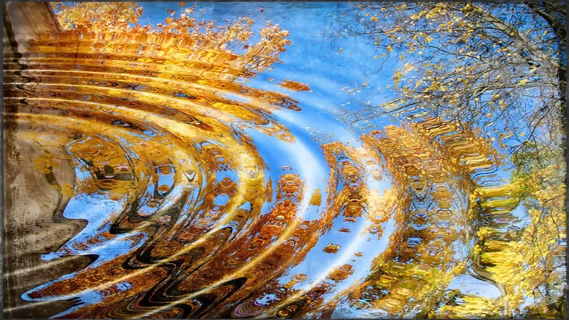 Осенний вальс.Я люблю эти дни Песня Слова Ю.Левитанского. Музыка Н.Птиченко