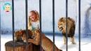 где СЕРАФИМА в КЛЕТКЕ со ЛЬВАМИ Seraphim in a cage with lions سيرافيم في قفص مع الأسود сериал SST