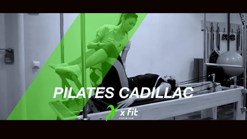 PILATES CADILLAC   X-FIT «ЖЕМЧУЖИНА»