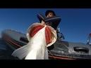 Pesca Submarina con Jose Miguel Lopez Corrales TEAM PHATOS vol2 mp4
