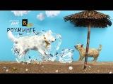 Что курил создатель этой рекламы?)))