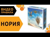Нория — настольная игра   Видео правила 🛸🔮