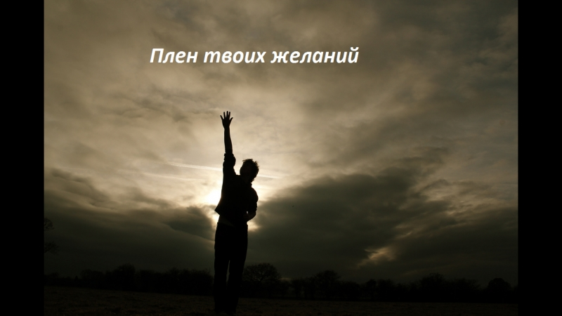 Чванько Евгения Плен твоих желаний