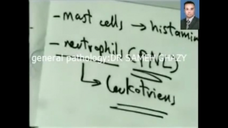 DR.SAMEH GHAZY - 3.chemical mediators cells of inflammation part 1