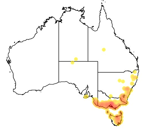 Ареал обитания: в относительно прохладном и холодном климате юго-восточной Австралии, южной Виктории, Тасмании и островах Пролива Басса.