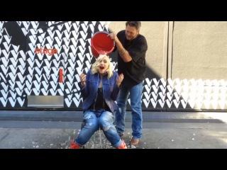 Ледяной флешмоб  Гвен Стефани Ice Bucket Challenge (Digital Exclusive)