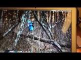 На съемках телепередачи «Орел и решка» на Аляске ведущая Регина Тодоренко сорвалась с обрыва и упала с 7-метровой высоты.