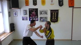 Shaolin Hung Gar Kung Fu Techique. Grand Master Martin Sewer September 2016
