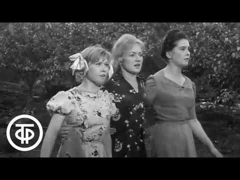Вызываем огонь на себя Серия 02 1964