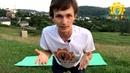 Простая йога при панкреатите, дискинезии, запорах | Йога для здоровья живота - ДЕНЬ 5