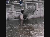 Парень прыгнул в ледяную воду, спасая собаку