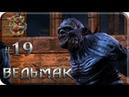 The Witcher 19 По следам убийц Прохождение на русском Без комментариев