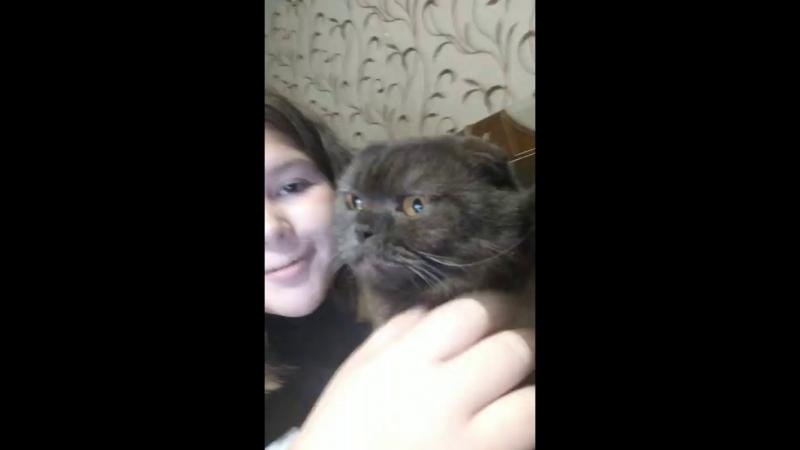 Виктория Керимова - Live