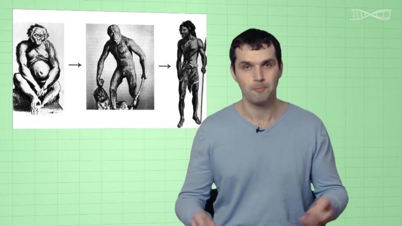 Недостающее Звено. Мифы об эволюции человека