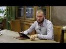 Антон Ежов Любовь и враждебность в отношениях