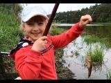 Успешная ловля карася. Маленькая рыбачка Анюта(4 года)
