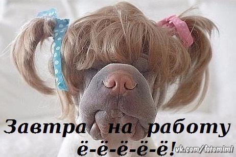 Фото №415472681 со страницы Елены Федоровой