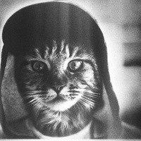Олег Медвідь, 18 декабря 1992, Симферополь, id210839670