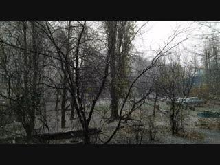 Первый снег в Калининграде