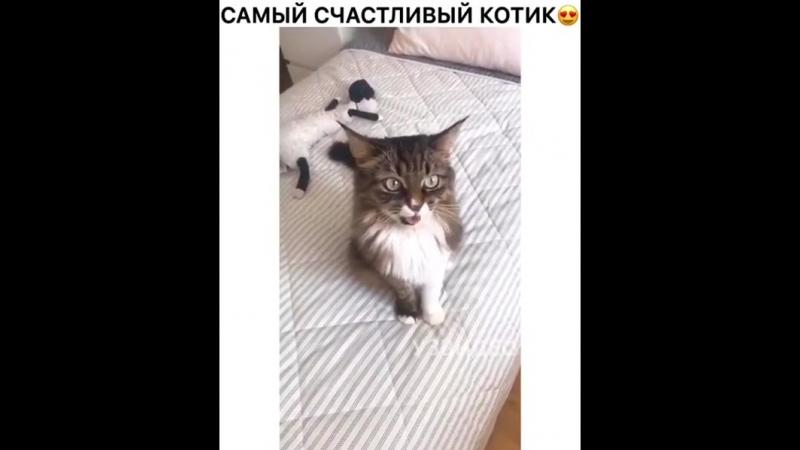 Durka.tv_Bn-yoD-H3k9.mp4