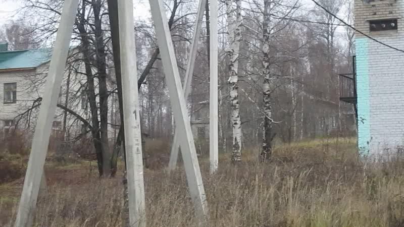 Крестный ход 04.11.2018 г. в Петровске. На подходе к берёзовой роще.