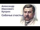 Александр Куприн Собачье счастье